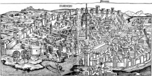 florence1493-50-50